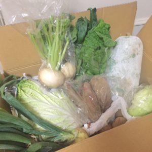 無農薬オーガニック野菜 ナチュールワークス